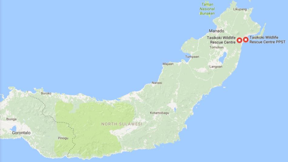 Tasikoki-Sulawesi