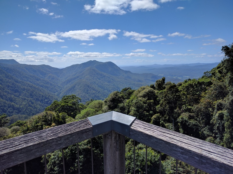 Dorrigo National Park view.jpg